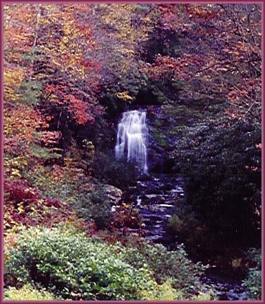 Meigs Falls Great Smoky Mountains National Park Waterfalls
